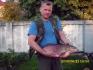 Leszcz 3.78 kg